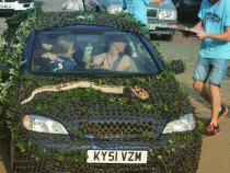 camouflage, banger rally, charity rally, road trip